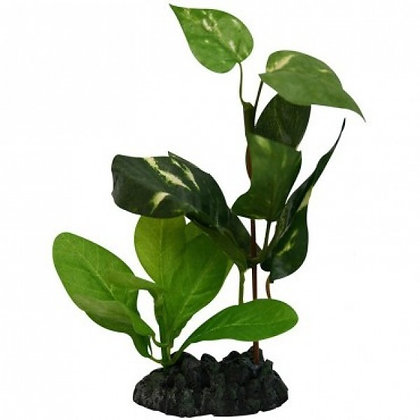 46711 Tropical Garden 15cm Reptile Plant