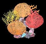 37361 Aqua One Coral Artificial fake Sea