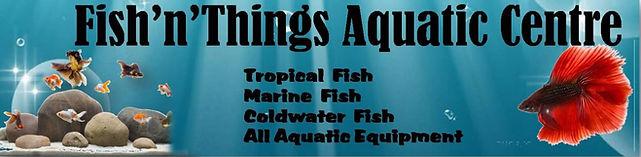 Fish n Things Aquatic Centre Neath Swansea Port Talbot Skewen
