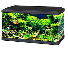 Ciano Aquarium 60 LED Black 58L