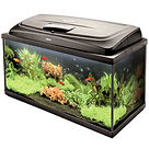 Aquariums and cabinets swansea neath skewen