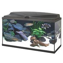Ciano Aqua 80 Aquarium - Black
