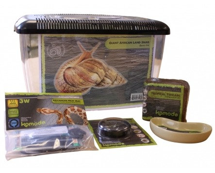 83103 Komodo Basic Giant African Snail Kit