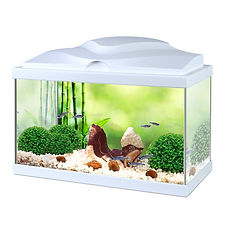 CIANO AQUA 20 LIGHT NATURE AQUARIUM.jpg