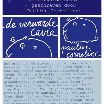"""Boekquote uit """"De verwarde cavia"""" geschreven door Paulien Cornelisse"""