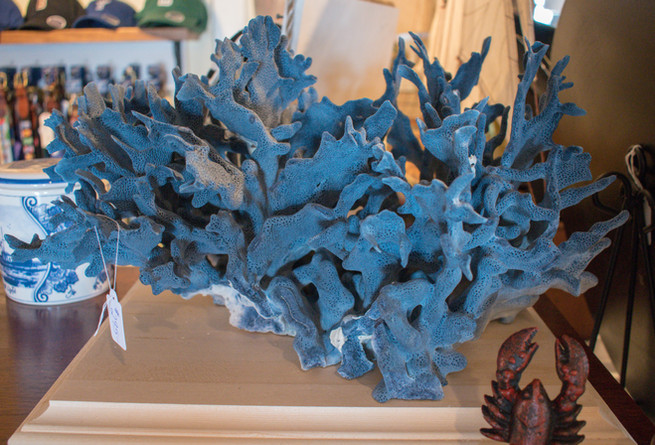 Large Blue Coral