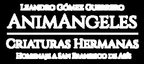 AnimAngeles