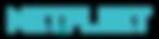 NetFleet logo.png