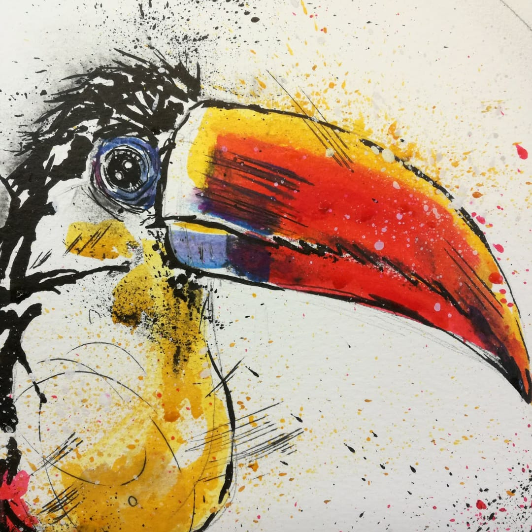 Splash Toucan