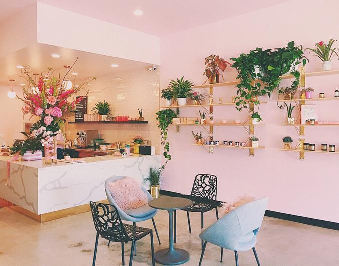 CAFE C2.jpg