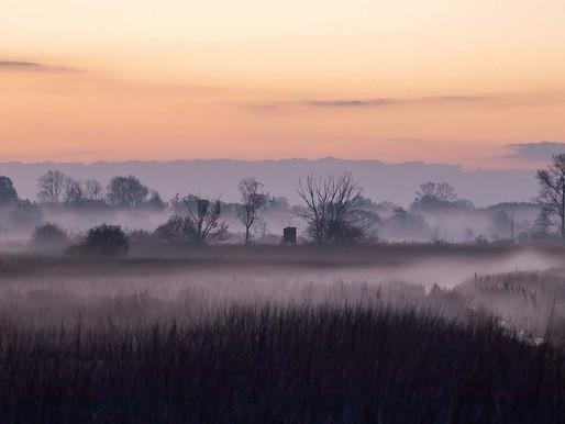 Morgenlicht an Fluß und Moor