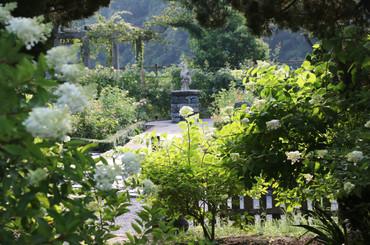 garden_7月.JPG