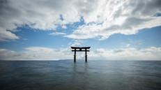 長浜観光地 利用許可済画像_210616_0.jpg