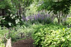 garden2020_4B1A8487.JPG