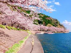 長浜観光地 利用許可済画像_210616_14.jpg
