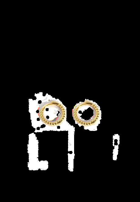 Twisted tini earrings