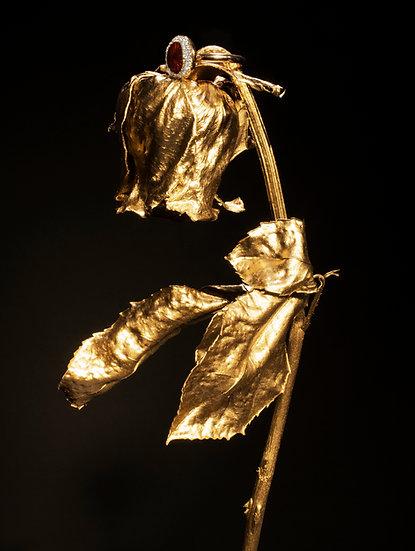 A Golden Flower, Archival Ink Jet Print