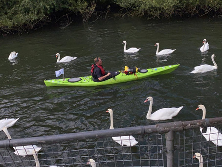 The Thames, Reading Festival and the Henley Regatta...sort of