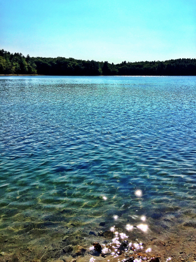 Walden Pond - Concord, Massachusetts