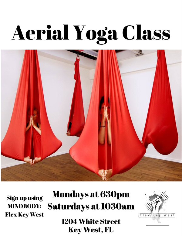 Aerial Yoga Class 2.PNG