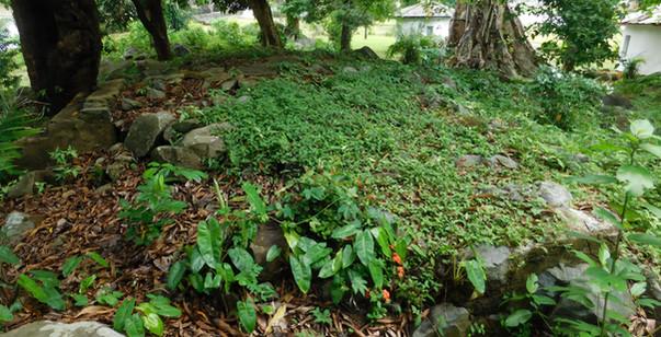 Providence Island stone foundations.
