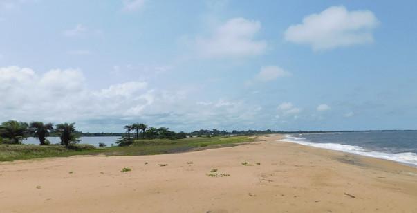 Edina coast.
