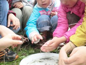 保育環境を考える③~小規模保育の課題~|園舎の設計