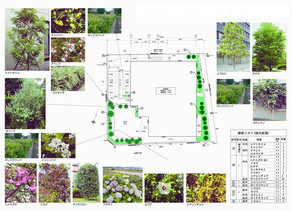 植栽の提案| 園舎の設計