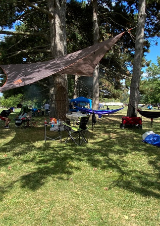 earl bales park picnic and shade structu