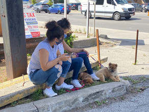 Young women seeking shade on a hot day are relegated to sitting on a concrete curb. We've seen a lack of seating, public green space, and shade.