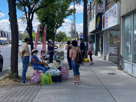 A busy bakery and a couple of trees offering shade on Wilson Avenue attracts other vendors—here, selling squash flowers—and provides a place for community connections.