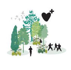 Health benefits associated with fresh air, time in nature, views to green space, recreation, and other outdoor activities