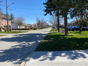 The sidestreets of Clanton Park have beautiful mature pine trees and shade, but no sidewalks.