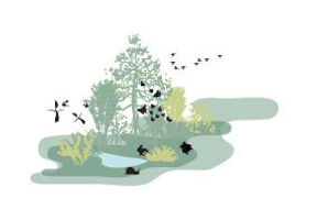 Biodiversity, by creating habitat that supports a wide range of native plants, insects, birds, and other wildlife