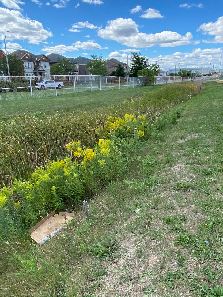 We saw that green spaces adjacent to the runway are largely unused by people and that fences cut it off from communities. We also saw bioswales that help process rainwater runoff.