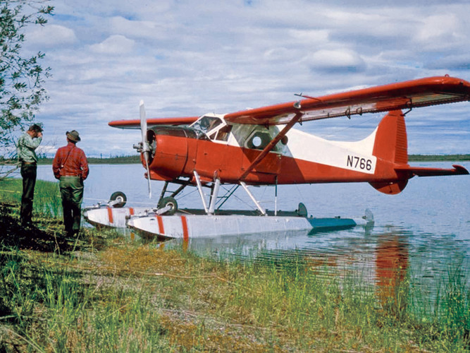 The de Havilland Beaver