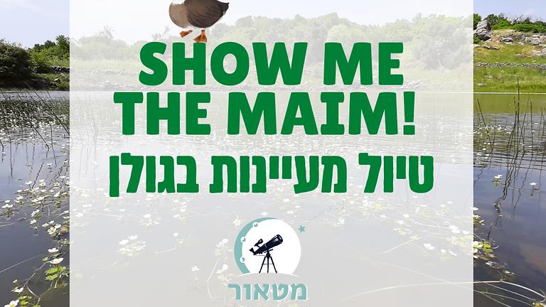 Show Me The Maim! - טיול מעיינות בגולן