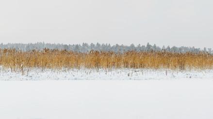 Järvafaltets Naturresrvat