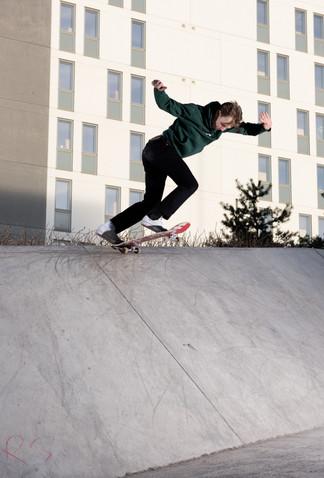 Mateo Bergil, backside tailslide, Stockholm, Sweden