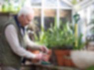 Senior-citizens-3_edited.jpg
