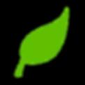 leaf-310555_960_720.png