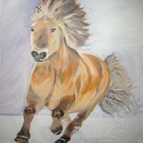 Galloperend paard