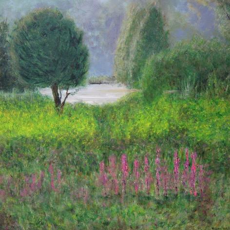 Landschap aan de Maas bij Baarlo