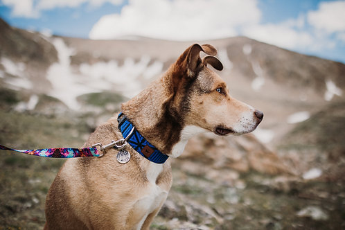 Designs by Wildside Water Resistant Collar