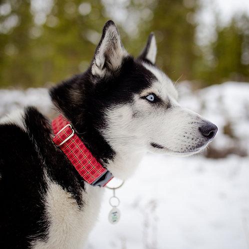 Walk in the Bark Collar