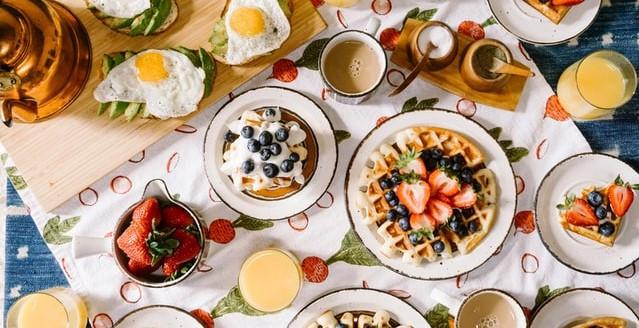 protocolos nutricionais e calculo de dieta