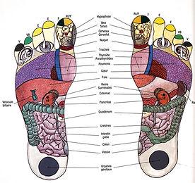 Reflexologie (1).jpg