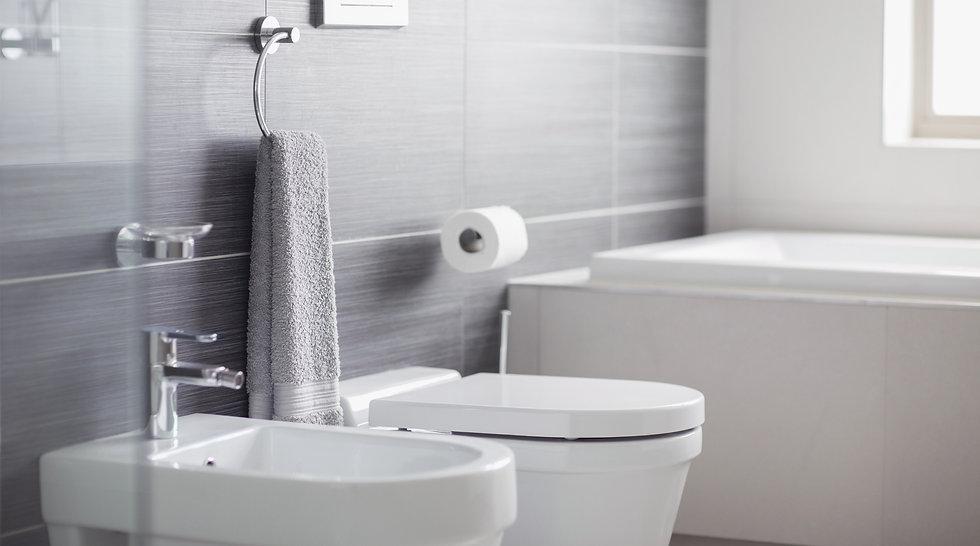 Bathroom%20Toilet_edited.jpg