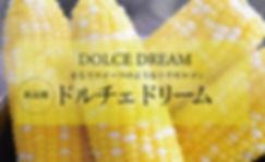 ドルチェドリームパネル980×600.jpg