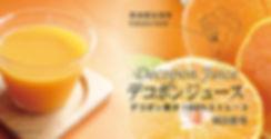 デコポンジュース980×500Bイメージ.jpg